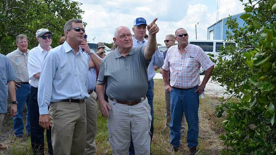 Florida citrus industry stakeholders lead Sec. of Ag Sonny Perdue on a grove tour