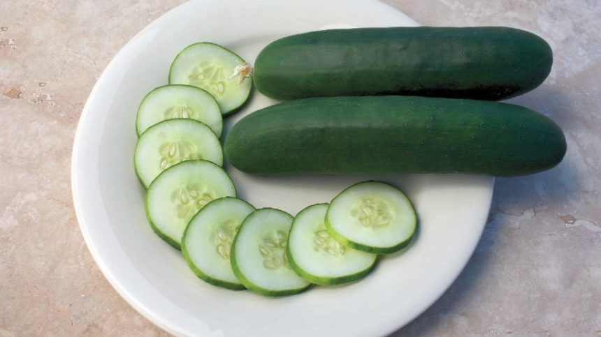 15 Great Cucumbers You'll Want to Grow
