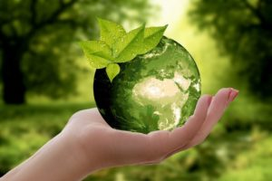 Sustainability-green-world-held-in-hand