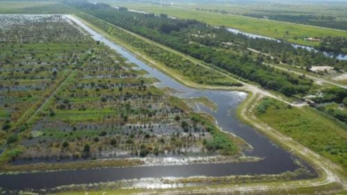 Water Farms Helping South Florida Go With the Flow
