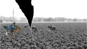 Protect Your Farmworkers — and Yourself  [Opinion]
